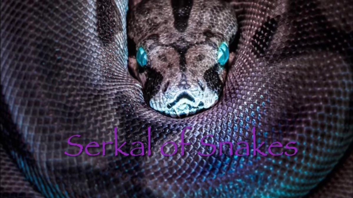Serkal of Snakes