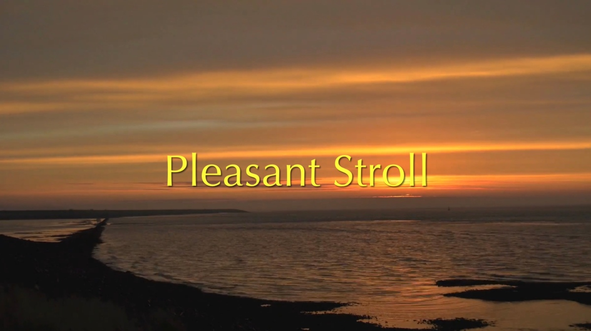 Pleasant Stroll